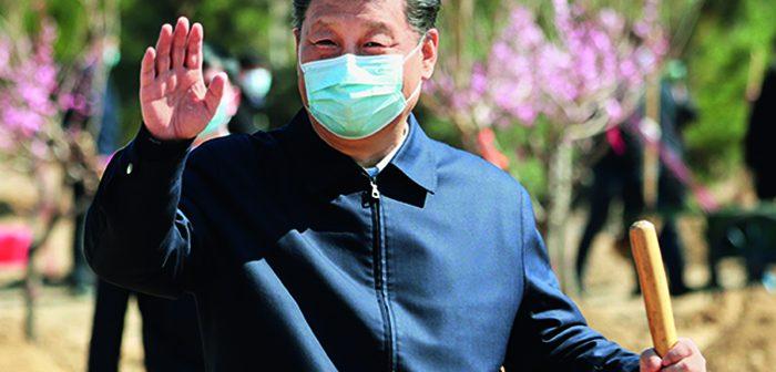 封面:党和国家领导人参加首都义务植树活动